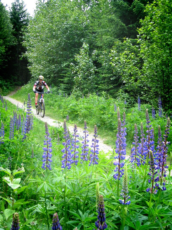 Trail Funding Saved in Texas