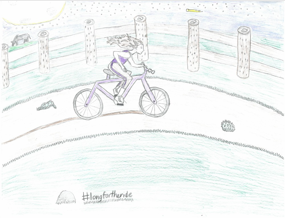 2015 poster contest 2nd place biketexas bicycle education