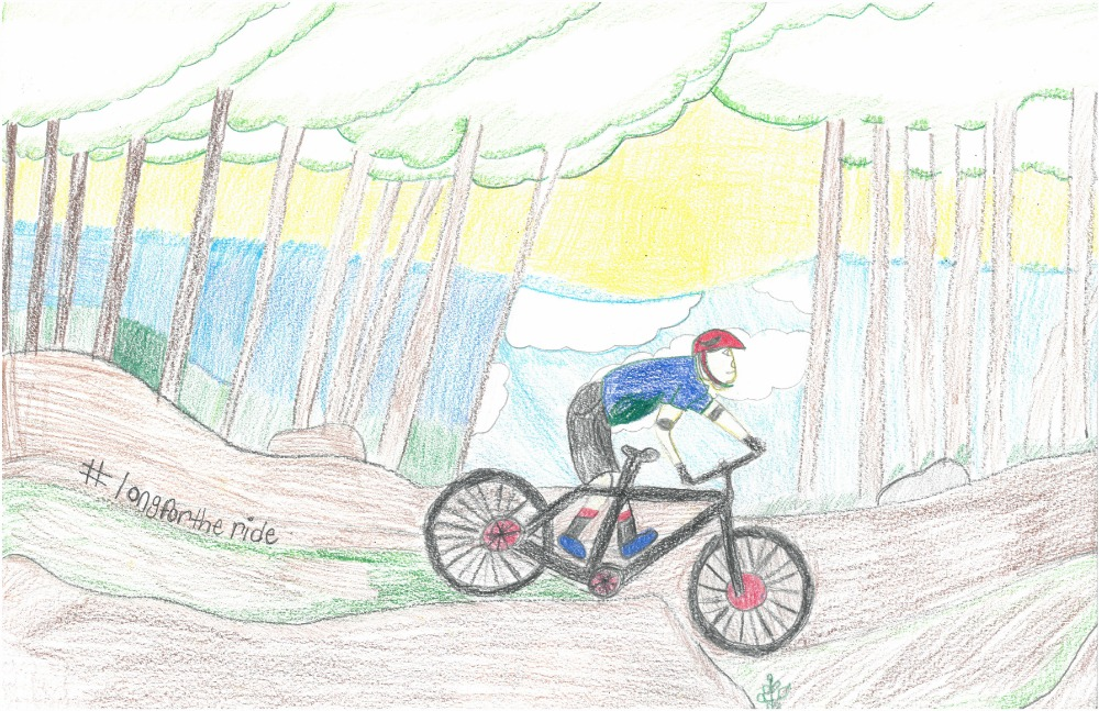 2015 poster contest biketexas bicycle education tyler
