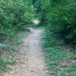 TTAT trail